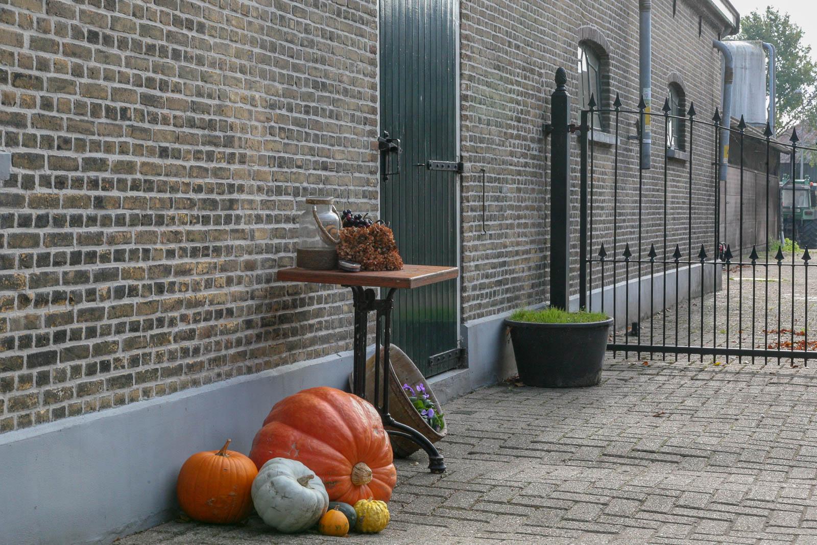 Hillegondahoeve-De Oude Stal-1477