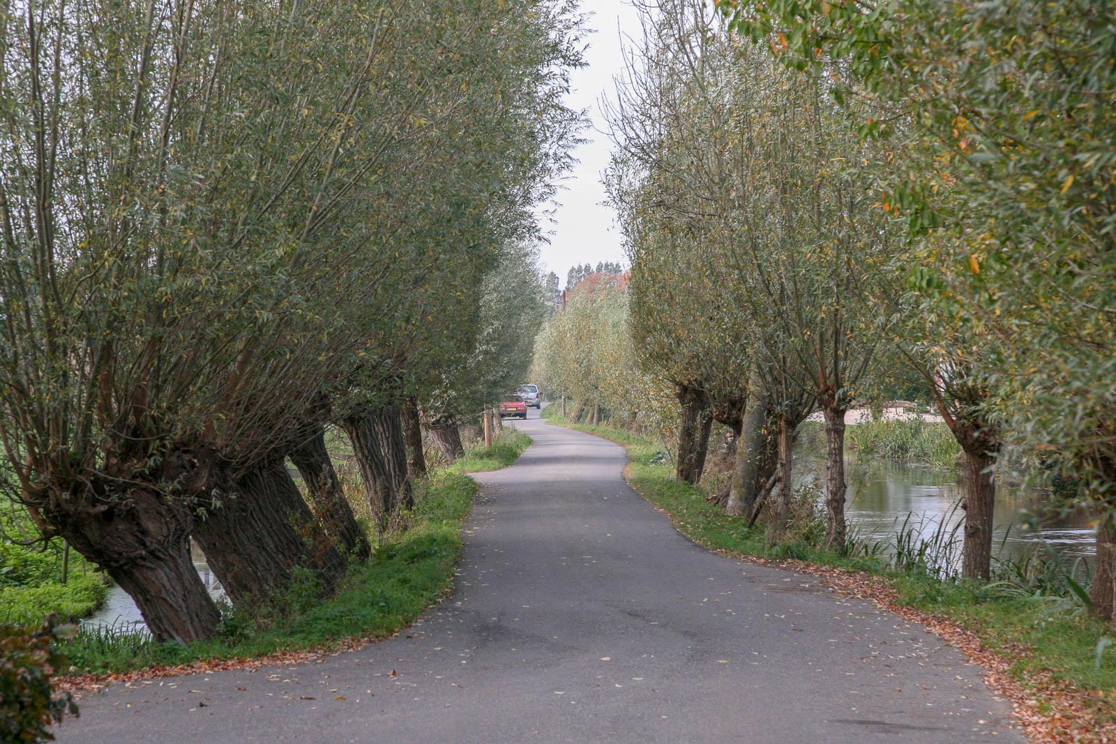 Hillegondahoeve-De Oude Stal-1479